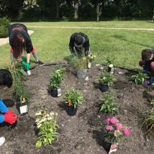 Pollination Garden at Compass Learning Center